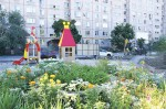 «Наш дворик зелен и красив»