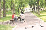 Парки и скверы ждут обновления